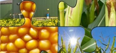 agroenergie2